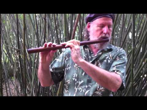 The Irish Flute