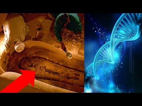 Ancient Egypt 2017 - Egyptologists DEBUNK Themselves! Egyptian DNA - Lost Ancient High Technology