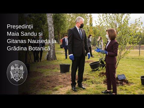"""Președintele Maia Sandu: """"Sper că planurile de cooperare dintre țările noastre vor prinde rădăcini adânci"""""""