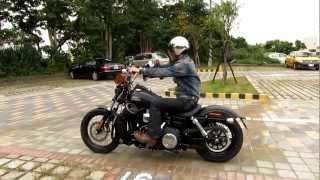 10. 2013 Harley-Davidson FXDB Dyna Street Bob Motorcycle Speaker (2)