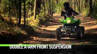 9. 2014 Arctic Cat 300 DVX