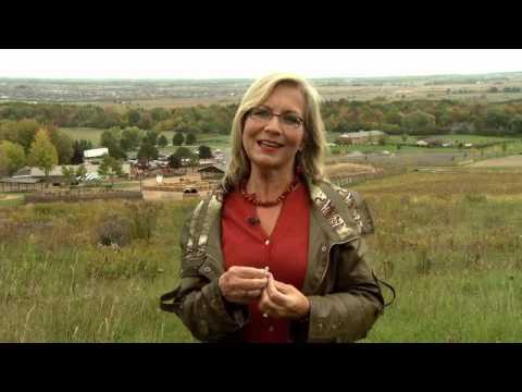 The Great Harvest - Harvest Devotional -- Moira Brown