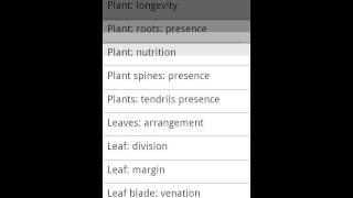 Key: Plant Families YouTube video