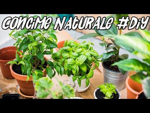 Concime Naturale / Fertilizzante Liquido Fai da Te - Liquid Fertilizer DIY