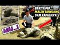 Download Lagu BERTEMU MALIN KUNDANG ASLI DAN KAPALNYA - Batu Malin Kundang Mp3 Free