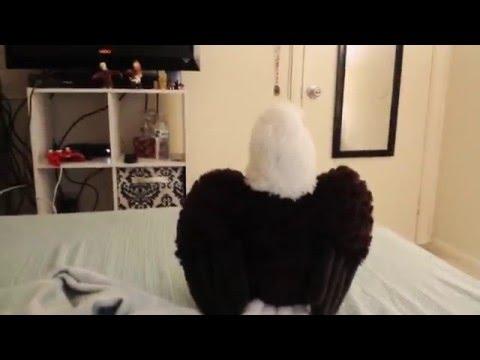 Stuff Animal Eagle