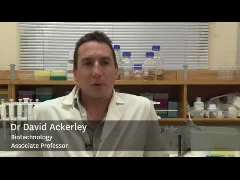 Research from NZ's top ranked School of Biological Sciences