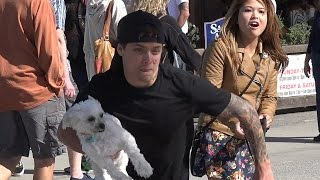 Nonton Stealing Dogs Prank   Stolen Dog Prank Film Subtitle Indonesia Streaming Movie Download