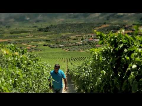 EOT - Winery (Production)