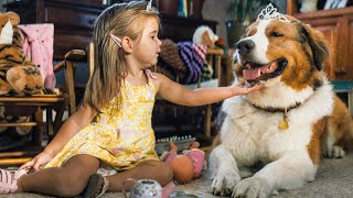 A DOG'S JOURNEY Trailer (2019)
