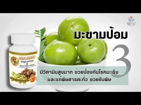 ตรีผลา - Golden Digestion & Detoxification สมุนไพรตรีผลา สูตร ช่วยย่อยอาหาร และล้างพิษ GTV (Good Idea TV) TOLL FREE : 1.888.988.8933 GTVThailand : (+66) 53-800799 ht...