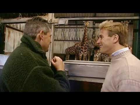 Animal Park: Season 6 Episode 5 (Wildlife Documentary)   Full Documentary