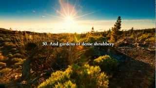 Surah Abasa Chapter 80. He Frowned (Quran)