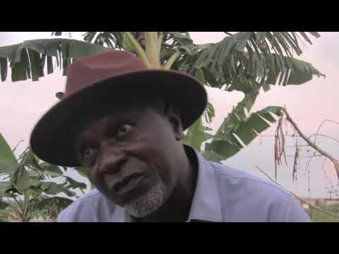 COTE D'IVOIRE: INTERVIEW DE M. LEKRE ALI CISSE, SUR LES PROBLÈMES DES VILLAGES TIAHA ET DEBRIMOU