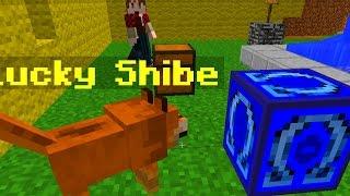 Minecraft OMEGA Lucky Blocks Mod (PET DOGE)