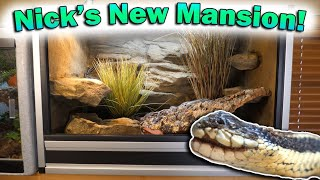 Our Blind Garter Snake Gets a HUGE New Cage! by Snake Discovery