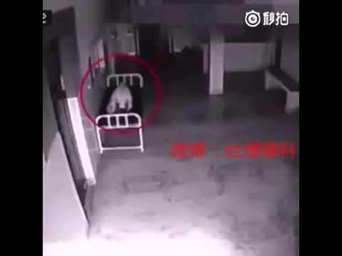 Kamera w szpitalu uchwyciła moment kiedy dusza opuszcza ciało zmarłej osoby.