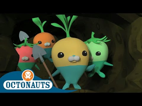 Octonauts - The Turnips Save the Day | Full Episodes | Cartoons for Kids