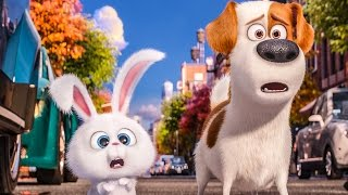THE SECRET LIFE OF PETS Trailer, Movie Clips, Viral Videos & TV Spots (2016) full download video download mp3 download music download