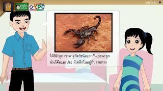 สื่อการเรียนการสอน อ่านเสริมเติมความรู้เรื่อง ตัวเล็กนิดมีพิษเหลือใจ ป.4 ภาษาไทย