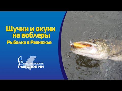 рыбалка в разнежье нижегородская