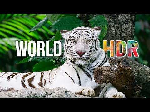 The World in HDR in 4K (ULTRA HD)