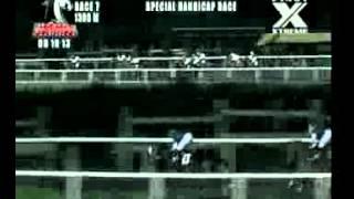 RACE 7 DANZCOTIC 09/19/2013