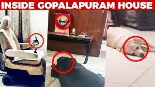 Video Heartbroken Visuals Inside Gopalapuram House! | Kalaignar Karunanidhi MP3, 3GP, MP4, WEBM, AVI, FLV Agustus 2018