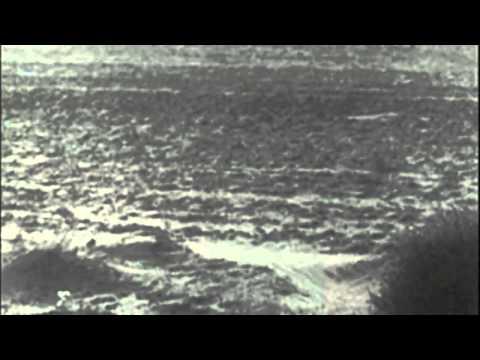 HEXVESSEL - Gaia