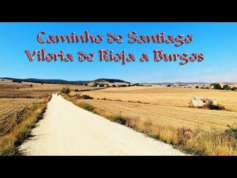 Caminho de Santiago de bike - 5º dia Viloria de Rioja a Burgos