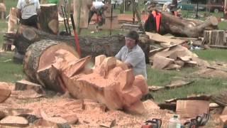 Video Barbara & Alan record Chainsaw Wood Sculptures at Woodfest Wales MP3, 3GP, MP4, WEBM, AVI, FLV April 2019