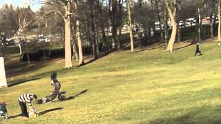 Un Aigle royal attrape un enfant dans un parc - YouTube