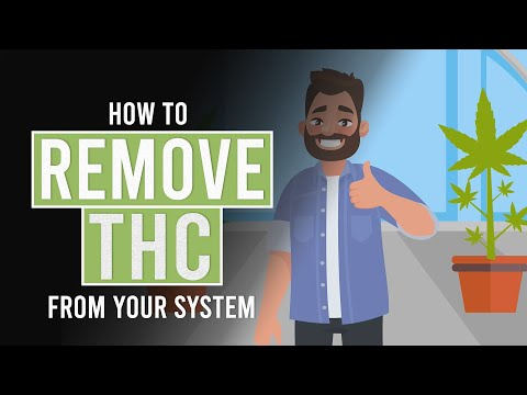 How to Remove THC From Your System!