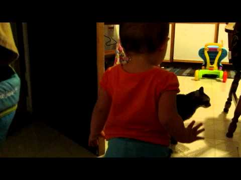 No One Believed Daddy When He Described His Baby and Cats Morning Ritual. So He Caught THIS
