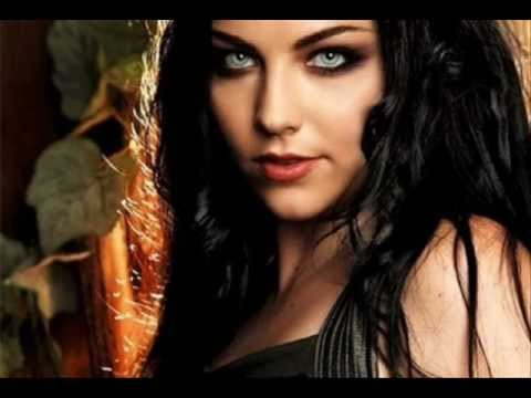 Evanescence - What you want Lyrics e traduzione