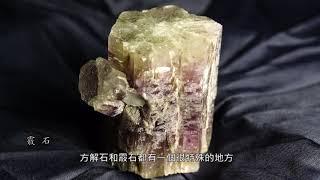 方解石與生物