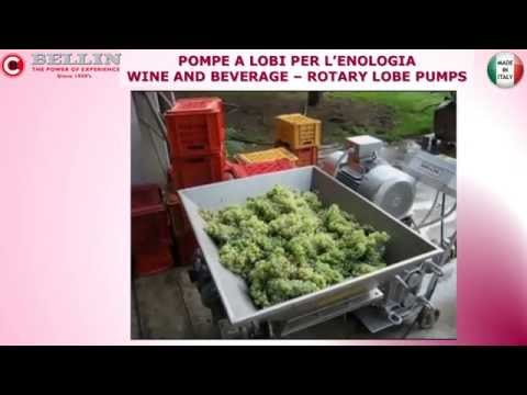 Bellin spa - Wine and Beverage Rotary lobe pumps