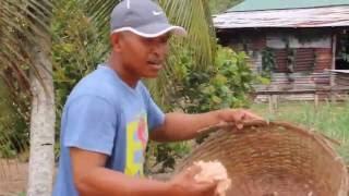 Ing Rust en Werk (Lèrèn lan Kerja) okeh wong Jawa sing manggon lan kerja. Okeh sing ngerjani teri lan ebi (urang cilik). Mbak Wonny Karijopawiro lan mbak ...