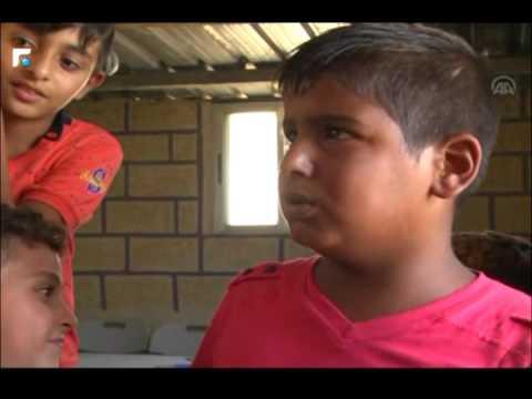 مكتبة سندباد: بذرة أمل لتعليم أبناء حي التنك الفقير في مدينة الميناء الشمالية