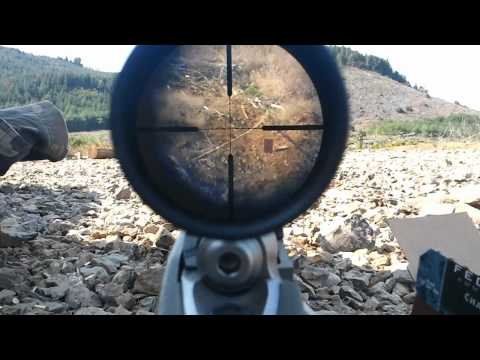 Ruger 10/22 .22lr shooting at 325 meters
