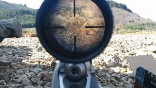 Ruger 10/22 .22lr shooting at 325 meters