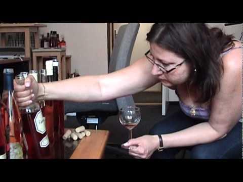 TV Gastro&Hotel: Degustace vína Gastro & Hotel