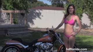 9. 2014 Harley Davidson FXSB Softail Breakout  New Motorcycles for Sale