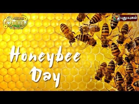 Honeybee Day In Iniyavai Indru - 20/08/2016 I Puthuyugam TV