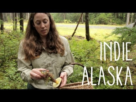 Mushroom - Each fall, mushroom enthusiasts flock to rainy Girdwood to pick all the choice edibles they can eat. But some hunters would prefer their favorite mushroom pa...
