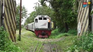 Video Weird Train Passing Through the Village and Gardens..What happened? MP3, 3GP, MP4, WEBM, AVI, FLV September 2018