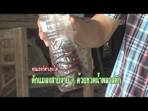 神老伯教你如何用寶特瓶就能捕獲整窩『蟑螂』,而且連碰都不用碰到牠們!