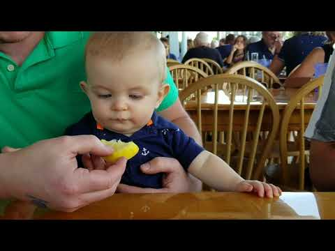 My 8 month old tries his first lemon