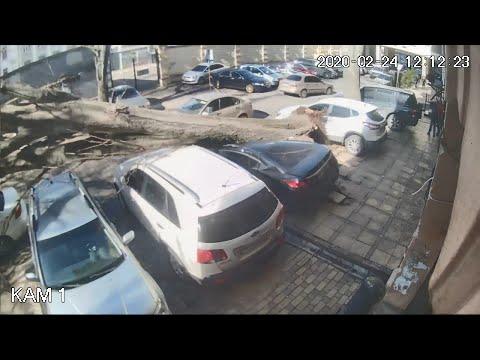 """Ураган """"Юля"""" буянит в Одессе (24/02/2020)"""