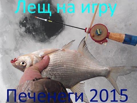ловим рыбу на печенежском